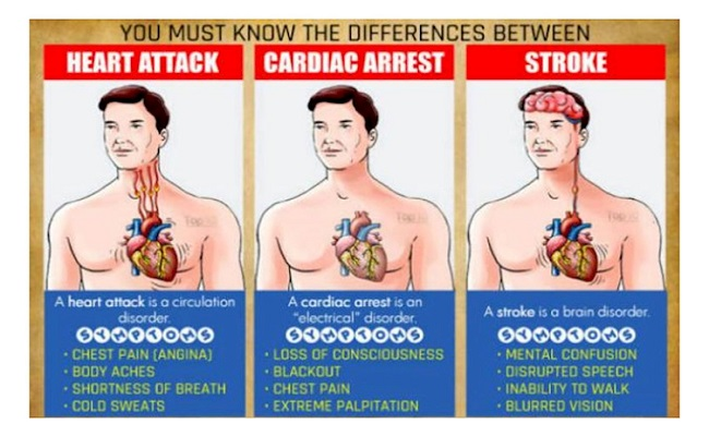 The difference between a heart attack and a cardiac arrest