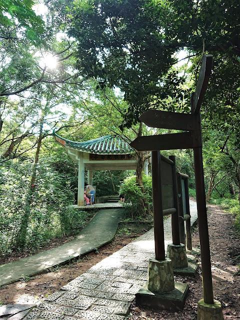 青衣自然徑4號觀景亭