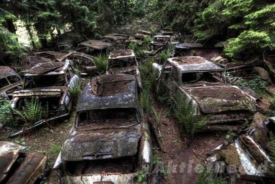 Το στοιχειωμένο μποτιλιάρισμα μέσα σε δάσος του Βελγίου