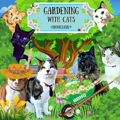 Gardening With Cats ©BionicBasil® 2021
