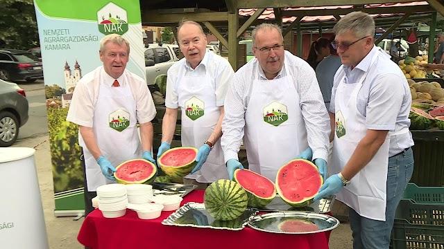 A görögdinnyét országos szinten 40 százalékban Békés megye szolgáltatja