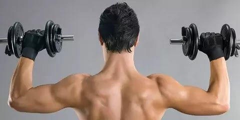 Builder Workout Back and Biceps Muscle | Nick Rana