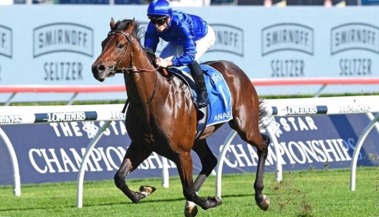 خيول جودلفين تواصل انتصاراتها في المضامير الأسترالية