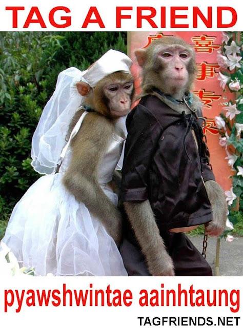 Happy Marriage In BURMESE
