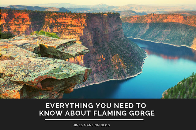 everything you need to know about Flaming Gorge blog cover image