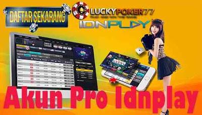 Akun Pro Idnplay