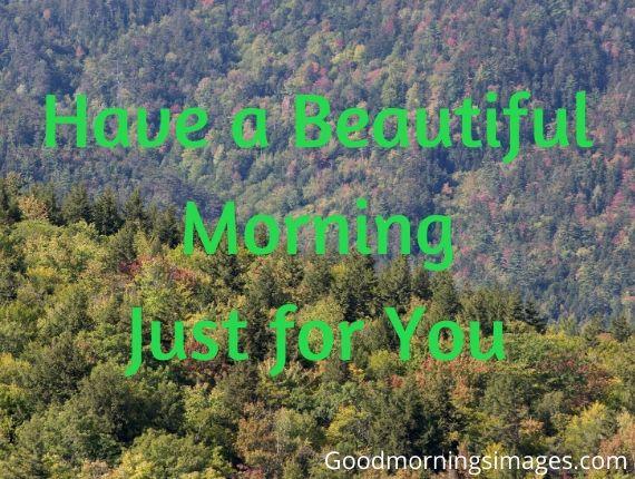 Good morning image 2019 hd