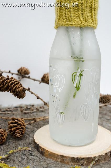 Vase mit Strickstulpe