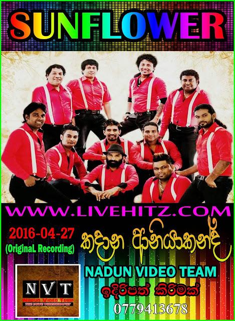 SUNFLOWER LIVE IN KADANA ANIYAKANDA 2016-04-27