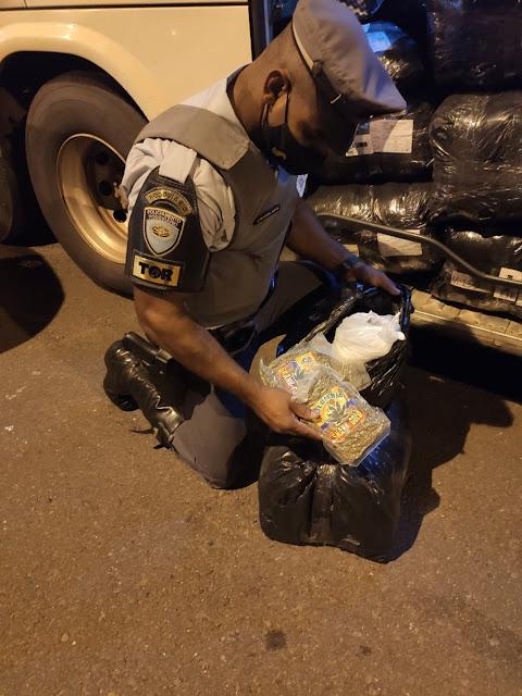 Durante vistoria, policiais localizam quase quatro quilos de skank com passageira
