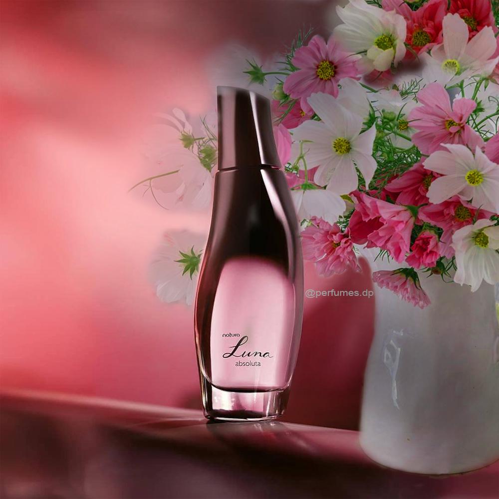 Resenha perfume Luna Absoluta Natura