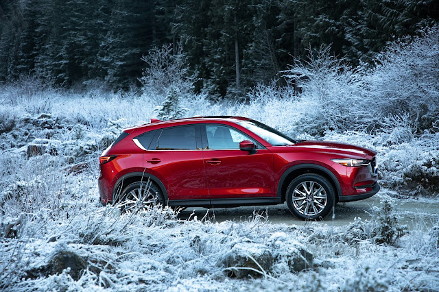 Side view of 2019 Mazda CX-5 Signature AWD