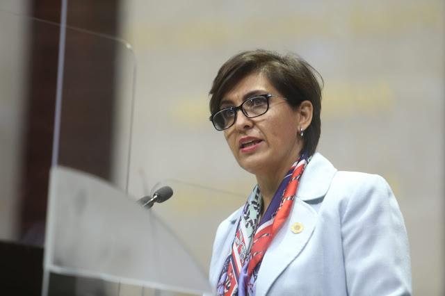 Urge replantear estrategia de coordinación en contra del COVID-19, a través de programas sociales: Mónica Almeida