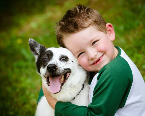 """Những lí do khiến bạn """"nhất định"""" phải nuôi chó"""