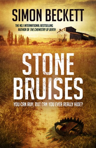 https://www.goodreads.com/book/show/18189475-stone-bruises