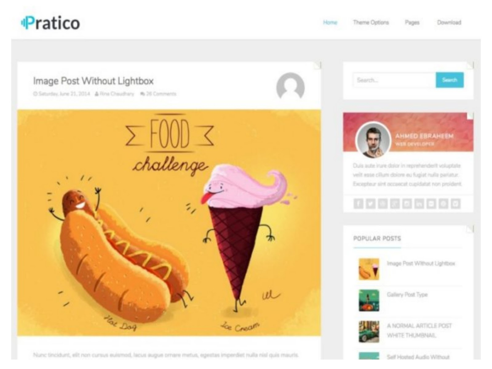 Pratico Light Responsive Template
