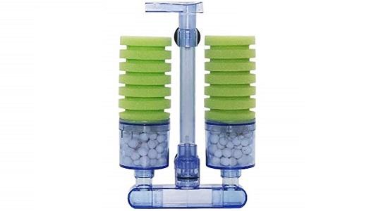 How to setup biological filtration