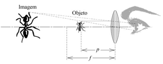 lupa simples consistindo de uma lente convexa