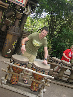 animal kingdom drums