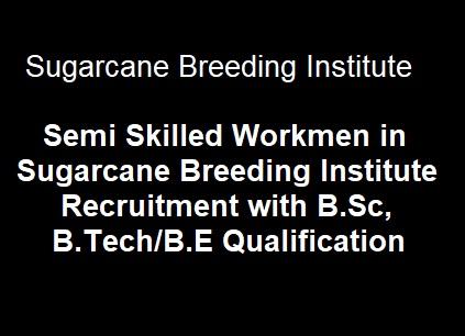 Sugarcane Breeding Institute: Vacancy For B.Sc