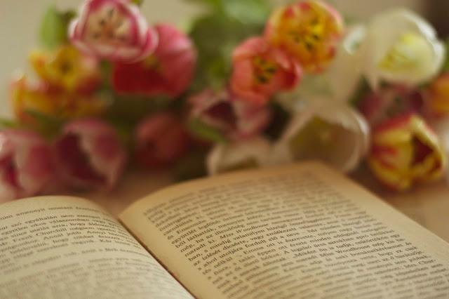 A magyar költészet napjának margójára