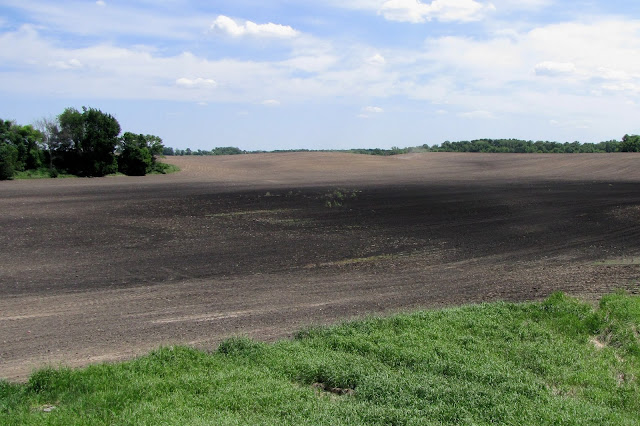 credit nitrogen following fallow fields
