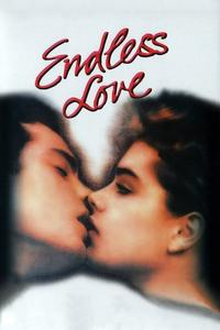Poster Endless Love