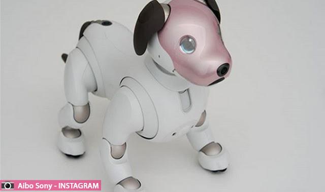 كلب روبوت قريبا للبيع في اليابان