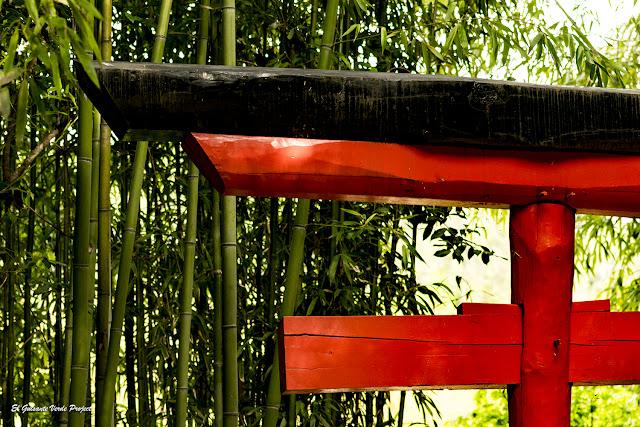 Torii de La Bambouseraie en Cevennes por El Guisante Verde Project