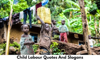 Child Labour Quotes And Slogans