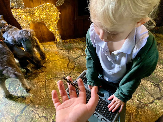 A preschooler being shown a stick insect when visiting a mini zoo review in Chingford East London