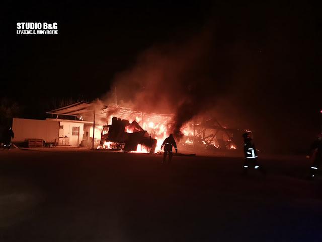 Αργολίδα: Μεγάλη φωτιά σε φάρμα βοοειδών στο Κεφαλάρι Άργους