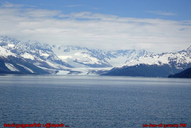 Prince William Sound Glacier Tour