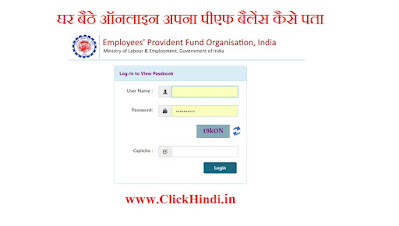 provident fund how to check epf balance online