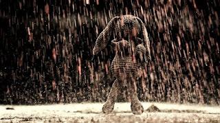 ursinho sob chuva de sangue