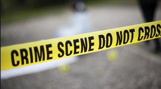 crime news, woman killed to protect daughter, howrah news, bengal news update, newzbangla, latest news, daily news