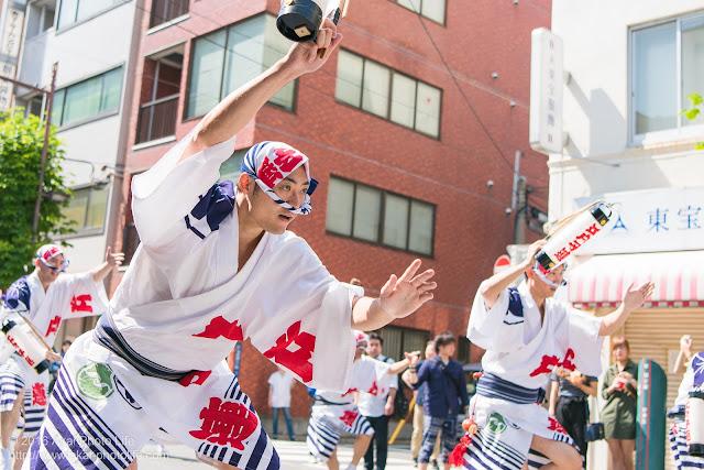江戸っ子連、マロニエ祭り、福井町通りでの豪快な流し踊り