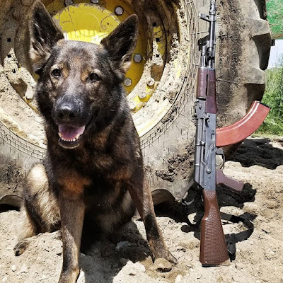 Sellrain-East-German-AKM-and-dog-I-want-to-pet