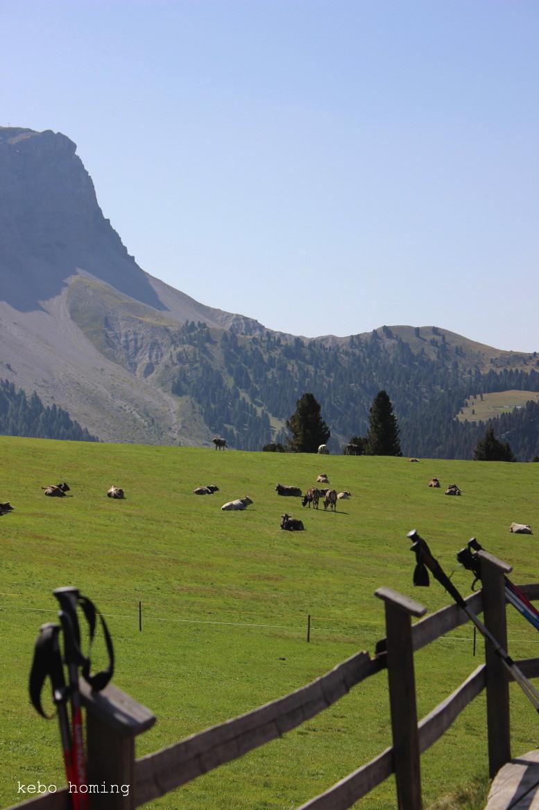 Kebo unterwegs..., Südtirol, South Tyrol, Alto Adige, Dolomiten, Naturpark Puez Geisler, Villnöss Tal, Wandertipp mit Kindern auf kebo homing, dem Südtiroler Food- und Lifestyleblog