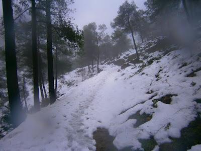 Nieve en Agres en la Serra Mariola. Autor: Miguel Alejandro Castillo Moya