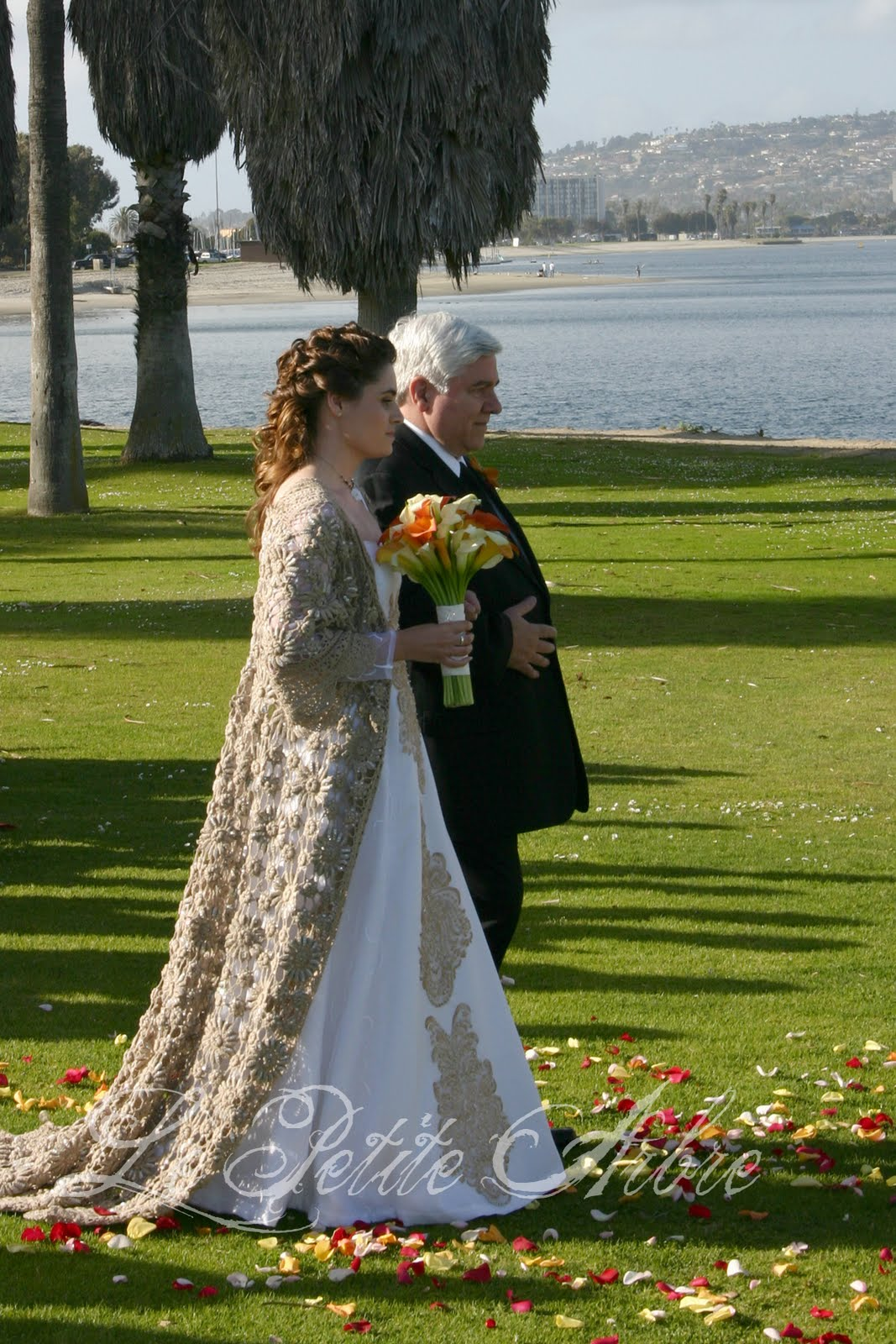 Le Petite Arbre: Star Wars Wedding Dress