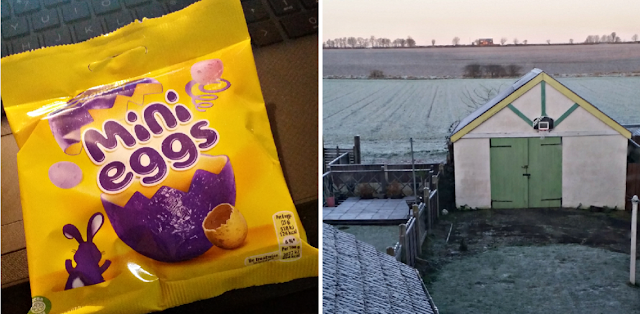 Mini eggs and a frosty garden