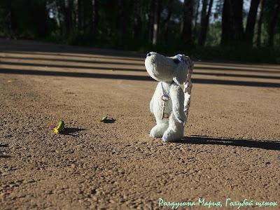 голубой щенок тедди ручная работа