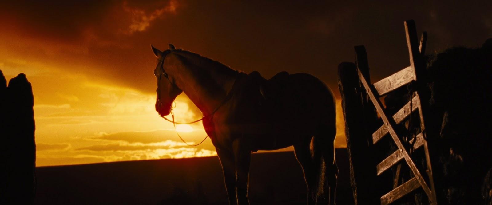 swadlincote cinema war horse