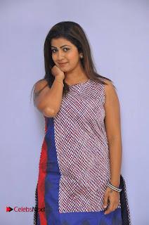 Telugu Actress Geethanjali Stills at Avanthika Movie Trailer Launch Event  0005.jpg