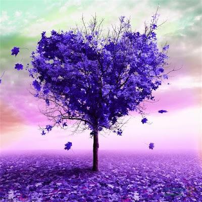 صورة لمنظر طبيعي لشجرة جميلة جدا على شكل قلب