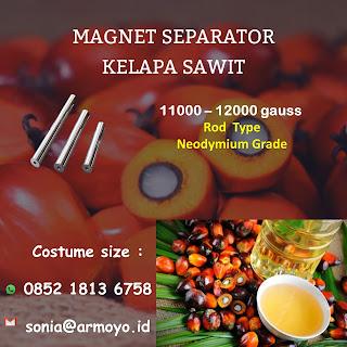 magnet kelapa sawit