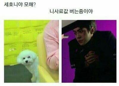 [PANN] Sehun'un EXO-SC geri dönüşünden solosu 'On Me'