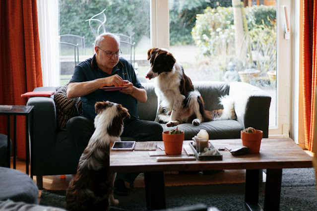 Pease porridge hot: What nursery rhymes tell us about dogs wanting food, like these two dogs watching a man eat from a plate
