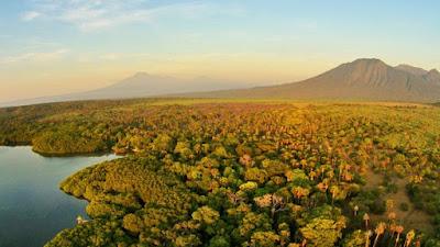 Pemandangan di Taman Nasional Baluran Jawa Timur